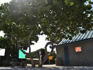 restrooms at coconut beach park