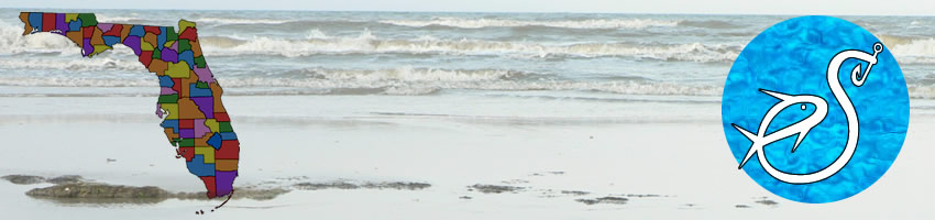 Jacksonville Beach in Duval County Florida - great for saltwater fishing