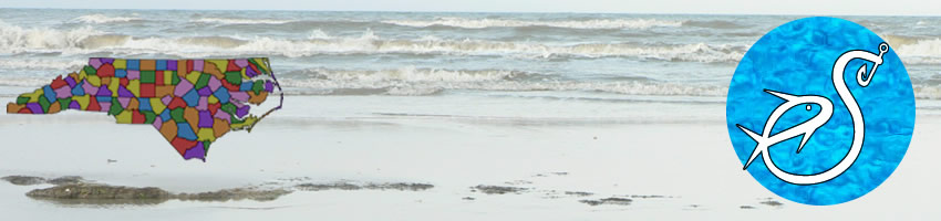 beaches in hyde county north carolina