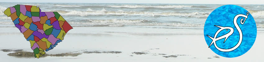 beaches in charleston county south carolina