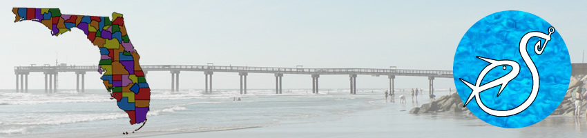 eddy creek fishing pier at Cape Canaveral National Seashore Florida