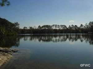 view of fannin bayou from donaldson point boat ramp