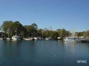 beautiful view of watson bayou from george park panama city florida