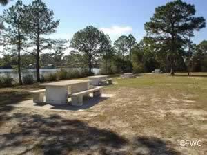 picnic along callaway bayou at john gore park and boat ramp