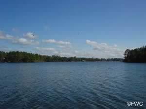 view of callaway bayou from john b gore park bay county florida