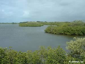sebastian inlet river
