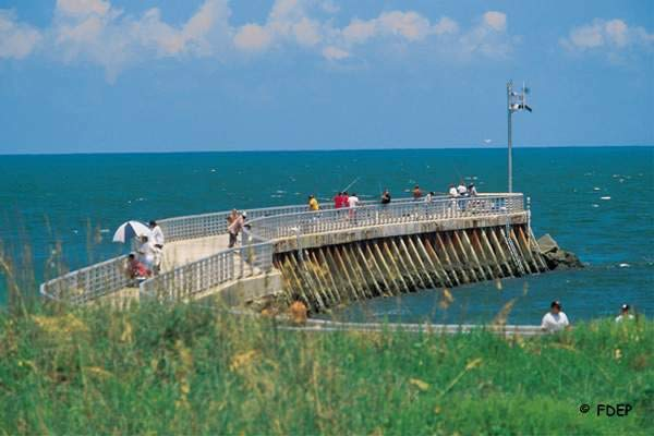 Where To Catch Fish In Brevard County Florida National