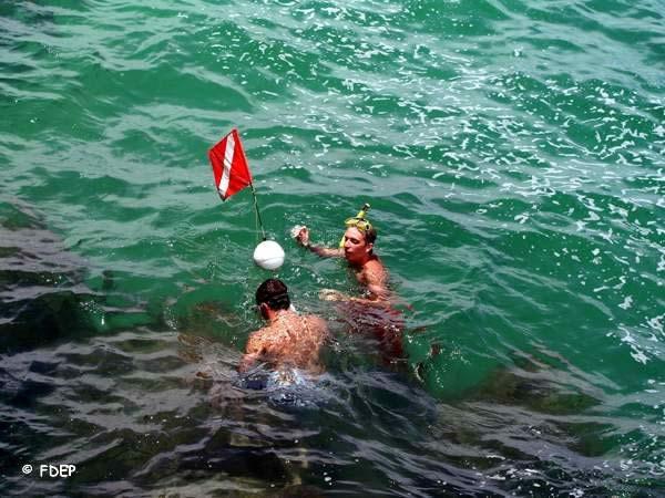 snorkeling at sebastian inlet