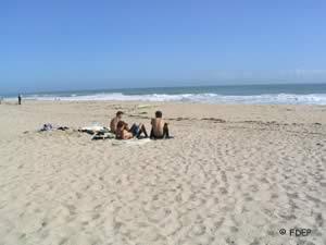 sebastian inlet beach