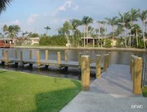 staging dock at colohatchee boat ramp in wilton manors
