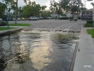 broward county fort lauderdale saltwater boat ramp