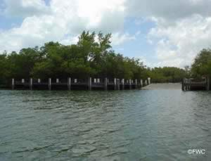 saltwater boat ramp in collier county near dellnor wiggins pass