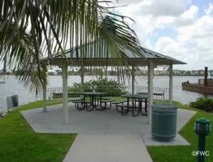 picnic along the banks of naples bay at naples landing park