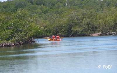 kayaking at pennekamp coral reef state park