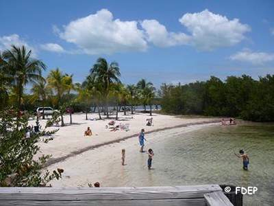 beach at john pennekamp coral reef state park fl