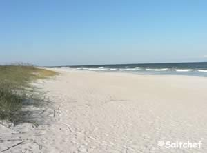 beach at kathryn abbey jax fl