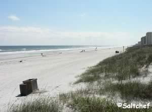 beach view jax beach