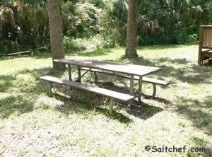 picnic at timucuan preserve boat ramp