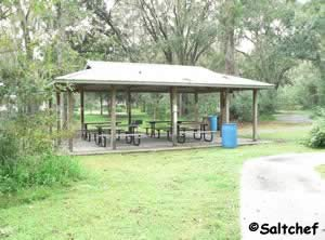 reservable pavilions are technically in walter jones historic park