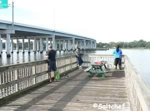 bert maxwell fishing fishing pier jacksonville fl
