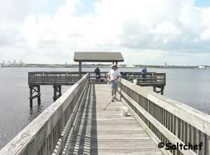 fishing pier at blue cypress park