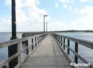 fishing pier under dames point bridge