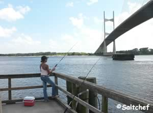 fishing pier dames point bridge