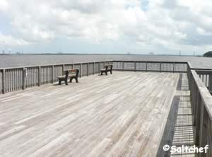fishing pier along st johns river at rheddie point preserve