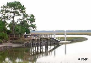 dock at big talblot state park near jacksonville
