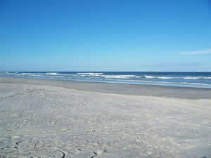 beach at little talbot state park florida