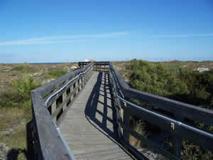 boardwalk at little talbot island state park