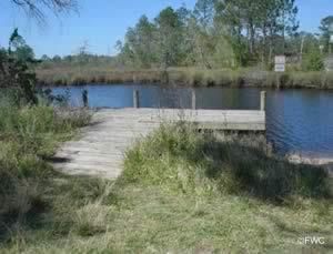 boat ramp dock at millview / heron bayou pensacola florida