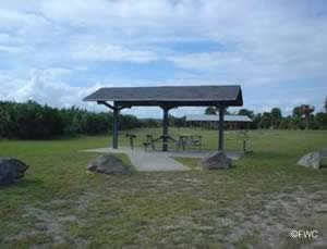 picnic area near gamble rogers boat ramp