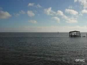 scenic apalachicola bay from battery park