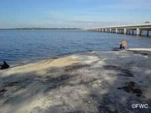 ochlockonee bay bridge boat ramp near carrabelle florida