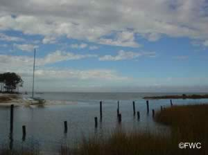 view of apalachicola bay from boat ramp near bridge on st george island