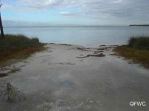 boat ramp 1 at st george island state park youth
