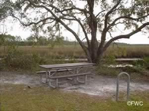 picnics at whiskey george creek ramp eastpoint florida