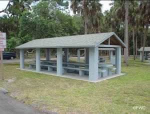 fish and picnic at bayport park and boat ramp in spring hill florida