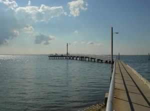 Where to catch fish in hillsborough county florida for Tampa fishing piers
