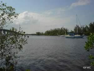 water view at macwilliams park