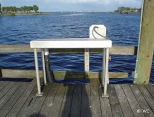 clean the saltwater fish you catch at sandsprit park stuart florida