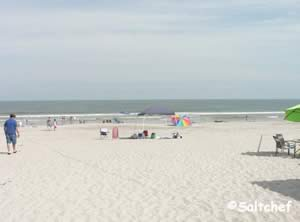 south view at main beach park fernandina beach florida