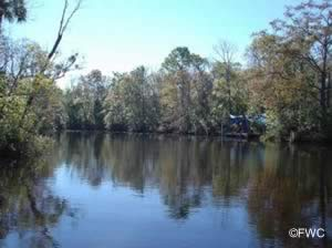 view of lofton creek from melton nelson boat ramp