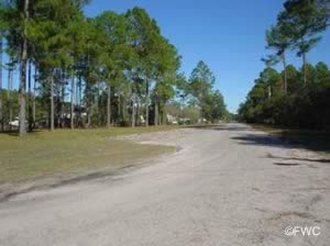wilson neck boat ramp yulee fl on nassau river