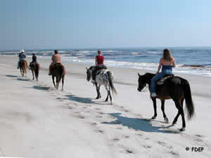 riding horses on Amelia Island State Park beach