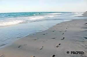 gulf stream park beach