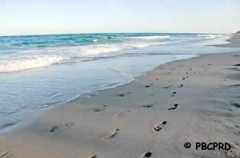 gulf stream park palm beach county