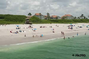 sunbathing at juno beach in palm beach county