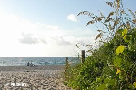 ocean reef beach riviera beach florida